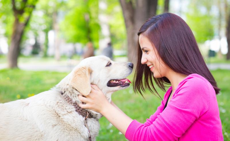 Dog Whispering & Pet Nutrition